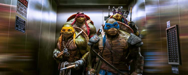 Teenage Mutant Ninja Turtles - 2014 (2)