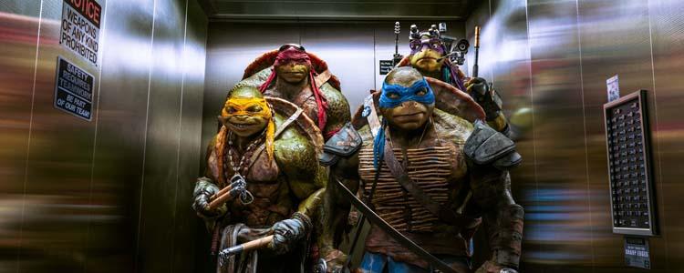 Teenage Mutant Ninja Turtles - 2014 (2)