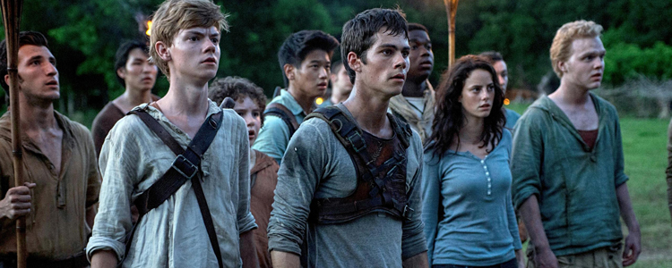 The Maze Runner - Le Labyrinthe (1)