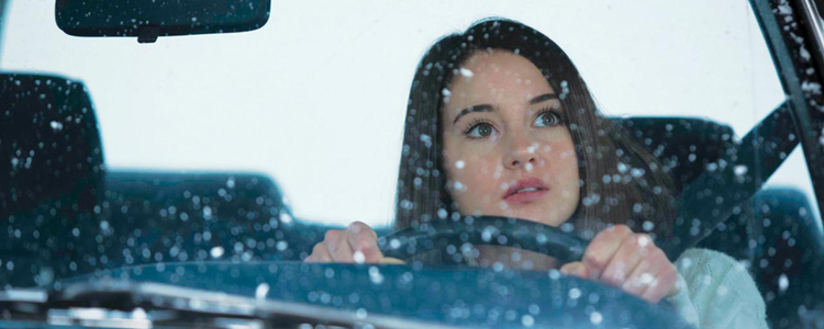 White Bird in a Blizzard - Shailene Woodley