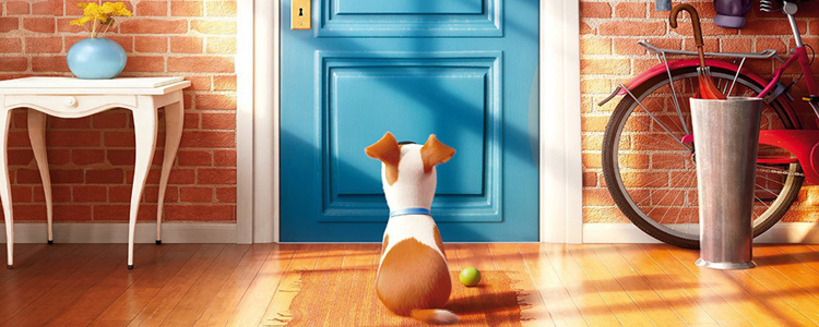 Comme des Bêtes - The Secret Life of Pets (1)