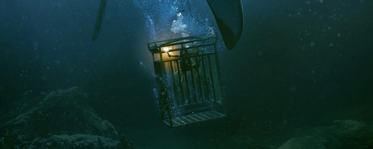 In The Deep - 47 Meters Down (2)